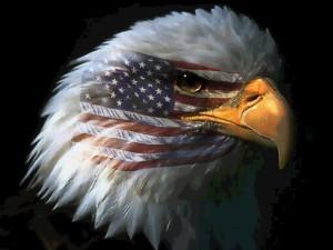 Αμερικανικός Αετός